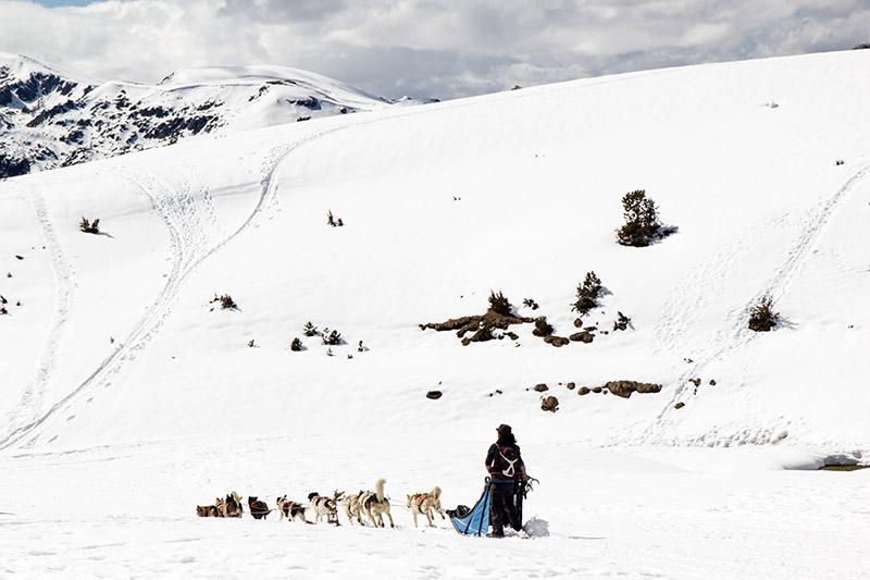 Traineau à chiens angaka