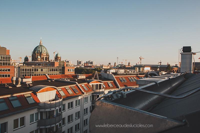 Visite Berlin (7)