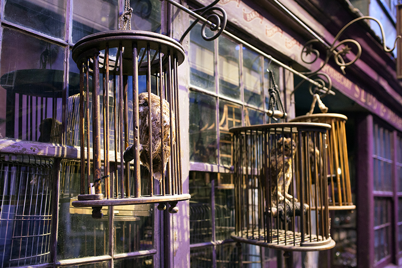 Studio warner bros harry potter londres chemin de traverse